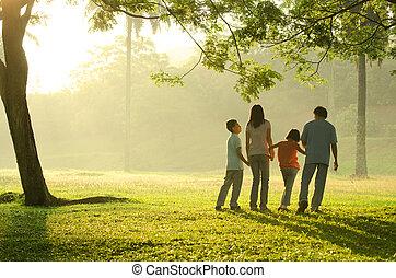 gyönyörű, gyalogló, árnykép, család, liget, napkelte, közben...