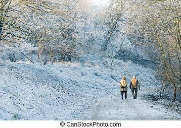 gyönyörű, gyalogló, tél, nap