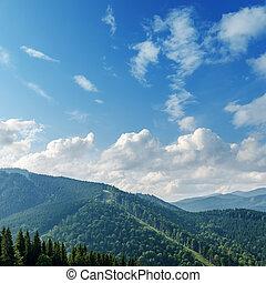 gyönyörű, hegy, zöld parkosít, bitófák