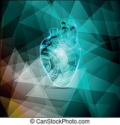 gyönyörű, kardiológia, háttér, elvont, emberi szív, anatómia