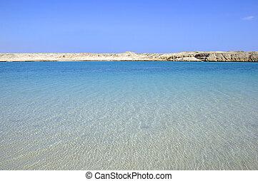 gyönyörű, kilátás a tengerre, és, dezertál, parkosít., szépség, alatt, nature.