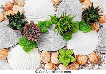 gyönyörű, leveses, lakberendezési tárgyak, moha, tengeri kagylók, detektívek