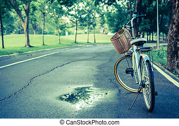 gyönyörű, liget, bicikli, táj