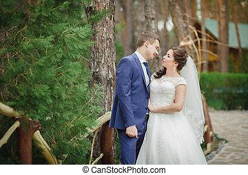 gyönyörű, menyasszony inas, dísztér
