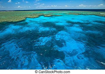 gyönyörű, nagy, kagyló, akadály, liget, ég, víz, zátony,...