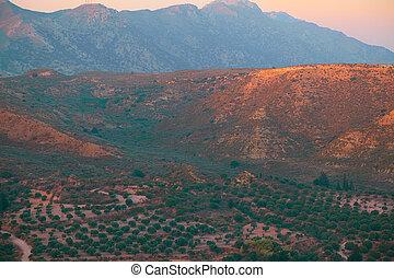 gyönyörű, napkelte, képben látható, egy, barna, dombok, táj