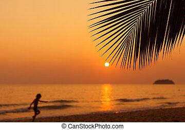 gyönyörű, napnyugta, felül, a, sea.
