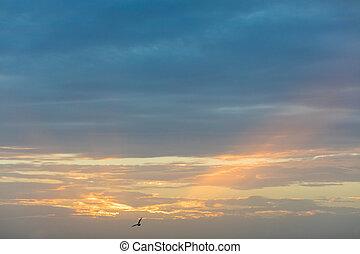 gyönyörű, napnyugta, felett, földközi-tenger