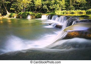 gyönyörű, nemzeti, mély, apa, erdő, tiszta, vízesés,...