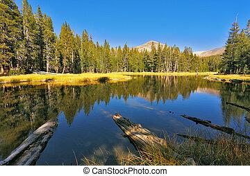 gyönyörű, nemzeti park, tó, josemite