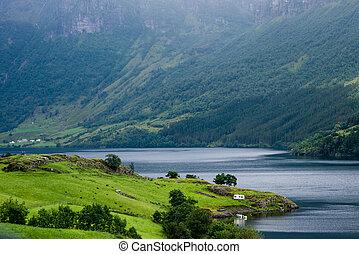gyönyörű, norvég, táj, noha, víz