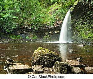 gyönyörű, nyár, vízesés, erdőség, folyik