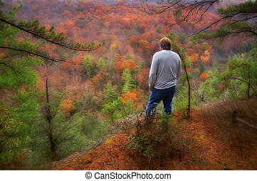gyönyörű, nyugat, dombok, virginia