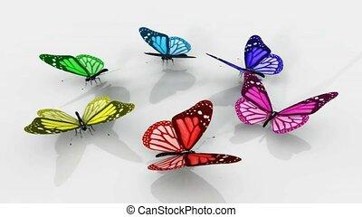 gyönyörű, színezett, pillangók