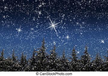 gyönyörű, tél, hó, bitófák, éjszaka, befedett, táj