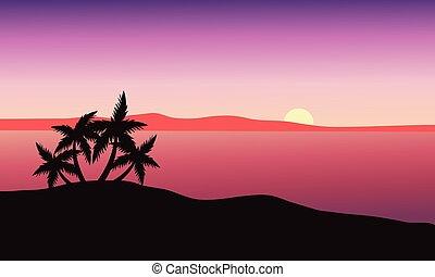 gyönyörű, tengerpart, napkelte