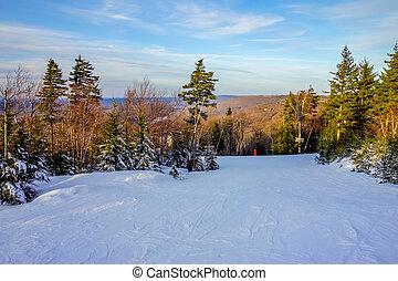 gyönyörű, timberline, tél, nyugat virginia, táj