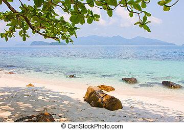 gyönyörű, tropical tengerpart