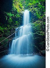 gyönyörű, vízesés, buja, hawaii