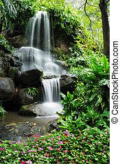 gyönyörű, vízesés, kert