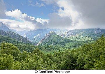 gyönyörű, völgy, alatt, picos europa