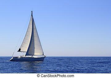 gyönyörű, vitorlás hajó, vitorlázás, vitorlázik, kék,...
