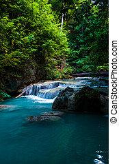 gyönyörű, waterfall., erdő, mély
