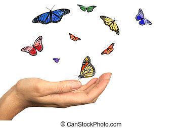 gyönyörű, womans, pillangók, felszabadító, kéz
