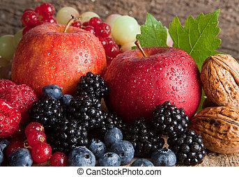 gyümölcsöskert, betakarít
