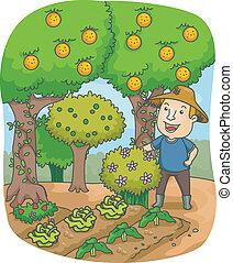 gyümölcsöskert, farmer