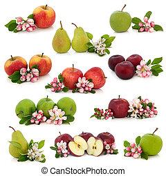 gyümölcs, gyűjtés