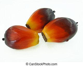 gyümölcs, pálma, olaj
