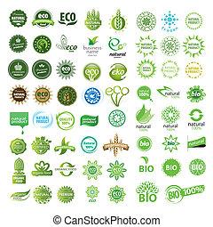 gyűjtés, közül, vektor, eco, aláír