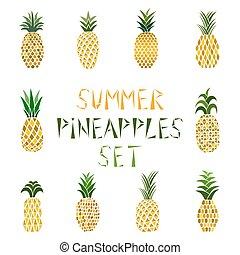 gyűjtés, tropikus, pineapples., fruits., lédús, állhatatos, színezett