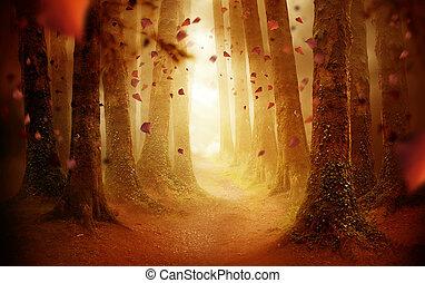 gyalogjáró, át, egy, ősz erdő