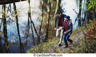 gyalogló, övé, társalgás., természet, atya, fiú, idősebb...
