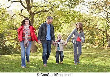 gyalogló, család, liget, fiatal, át, szabadban