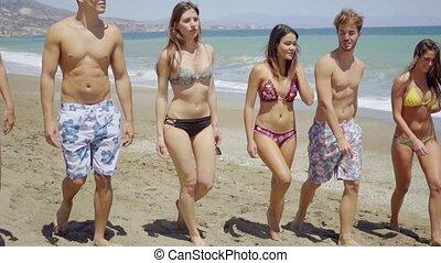 gyalogló, csoport, barátok, fiatal, különböző, tengerpart