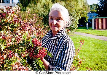 gyalogló, nő, öregedő, rowan, hatalom kezezés