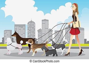 gyalogló, nő, kutyák