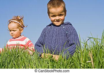 gyerekek, fű, játék