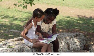 gyerekek, oktatás, barátok, könyv