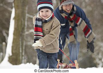 gyerekek, vontatás, szánkó, át, tél parkosít