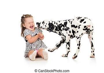 gyermek, leány, játék, noha, kutya