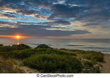 gylden, solopgang, strand