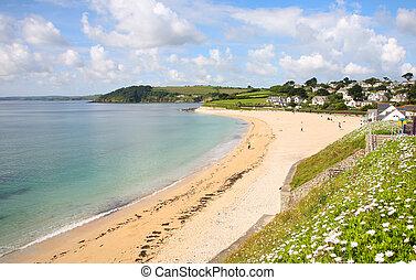 gyllyngvase, praia, em, a, verão, falmouth, cornwall.