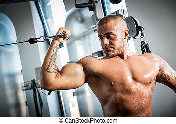 gym., afuera, muscular, trabajando, hombre