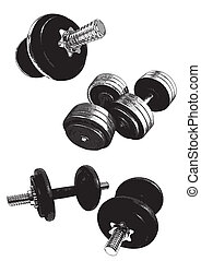 gym equipment - rym equipment in the white background