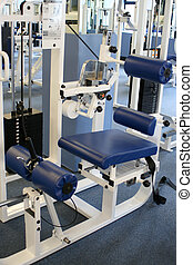 gym equipment - spinal extension machine