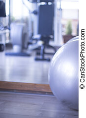 Gym exercise pilates ball